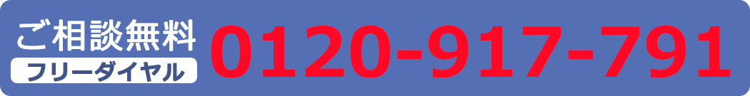 0120-917-791